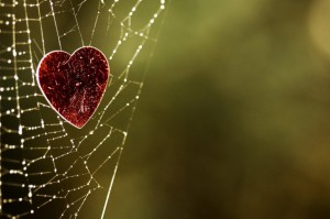 web-heart-background-485x728